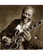 Achetez vos disques vinyles neufs de Blues chez Renaissens